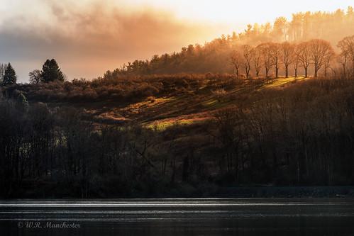 canon landscape light 5dmk4 tamron150600 availablelight acraswiss catskillnewyork catskill greenecounty hudsonvalley hudsonriver sunlight sunrise warm water trees
