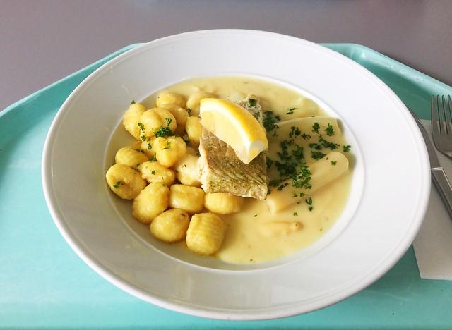 Steamed coalfish with gnocchi & asparagus ragout / Gedünstetes Seelachsfilet auf Gnocchi & Spagelragout