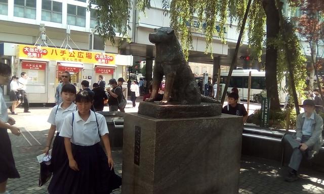 Hachiko, Shibuya, Tokyo