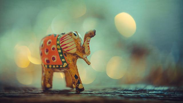 Elephant for good luck