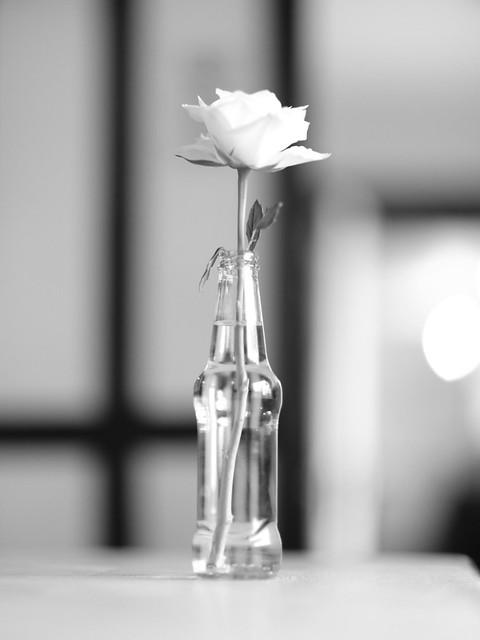 Flower in a bottle.