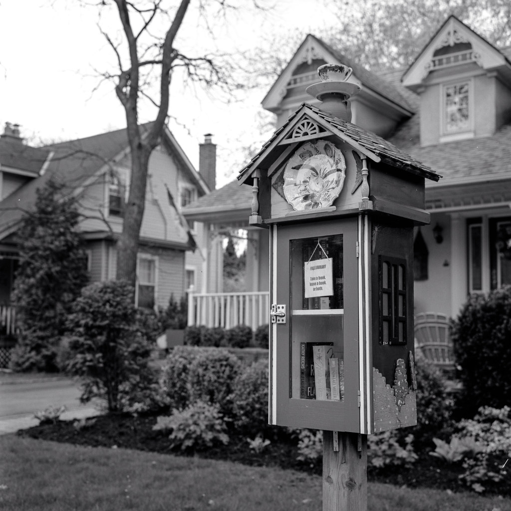 Maple Avenue Tiny Library Branch