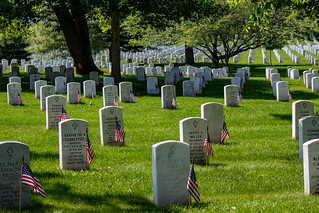 Flags are place for the fallen and their families buried in Arlington Cementery