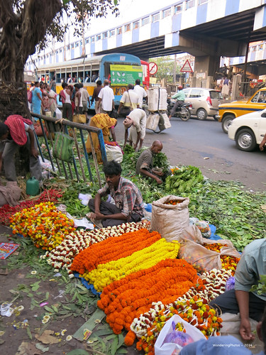 Marigold Garlands - Malik Ghat Flower Market - Kolkata West Bengal India