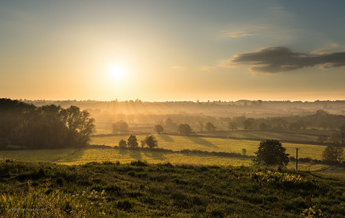 dawn early local sunsrise toniphotoxoncouk cherwellvalley oxfordshire somerton upperheyford middleaston misty contrejour farmland fields trees golden yellow nature natural beauty mellow warm bask glow cowparsley fences canola rapeseed earlymorning sleepy countryside rural