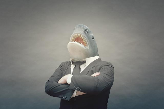 147/365 - the legal shark
