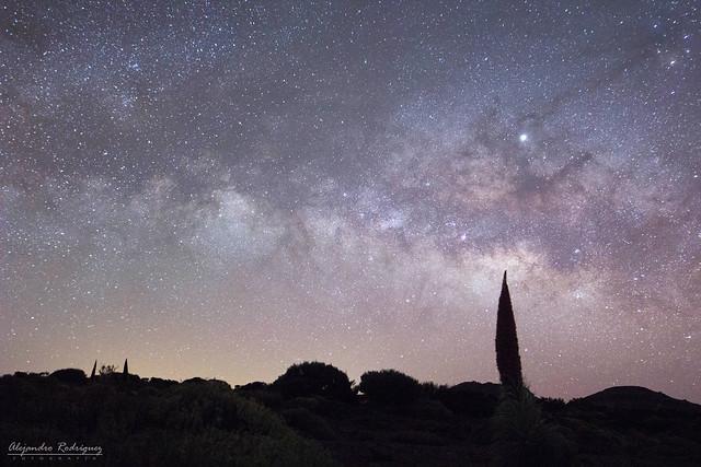 Por delante de las Estrellas