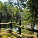 05262019_memorialdaycamping_geminilakesc-0296