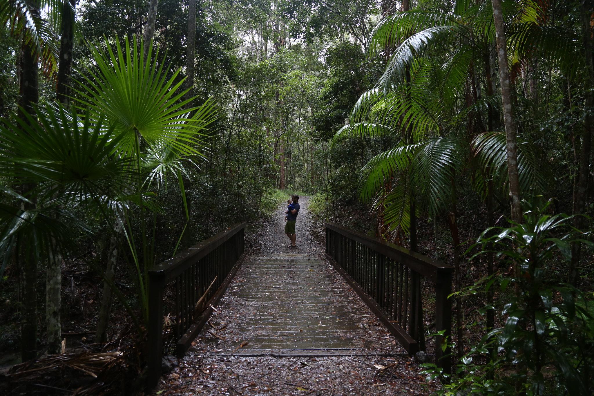 Maroochy Regional Bushland Botanic Garden.