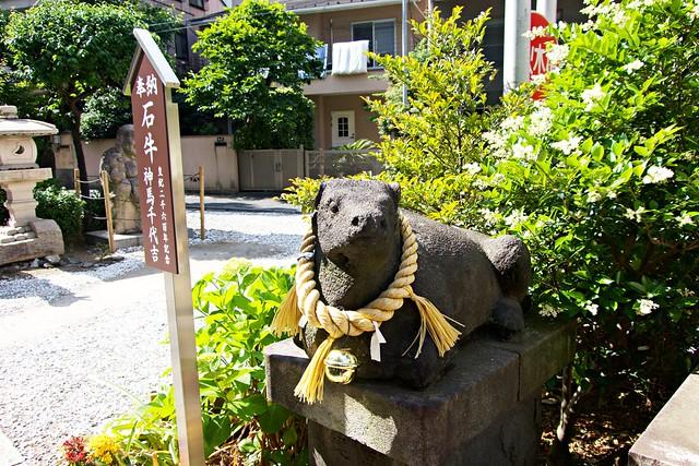 hirakawatenmangu_013