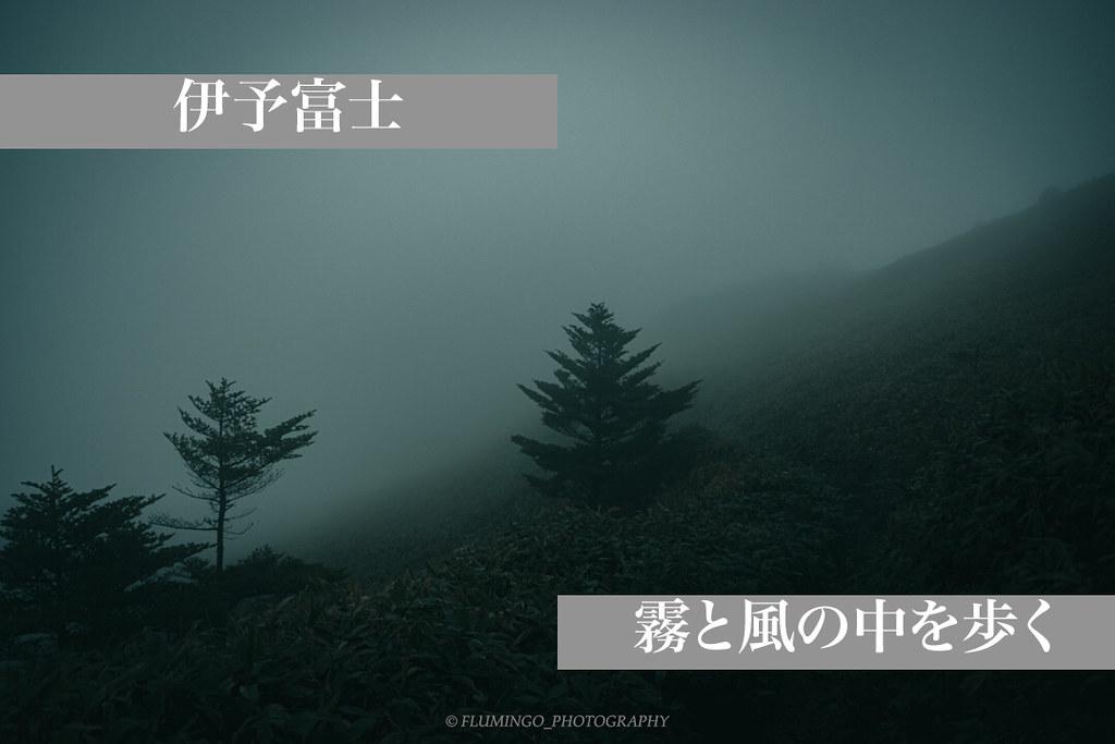 AdobePhotoshopExpress_2019_05_28_14:39:03