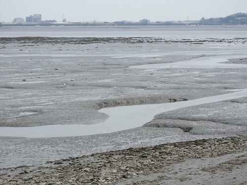 EAAF145 Incheon Songdo Tidal Flat