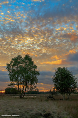 Nice clouds sunset