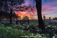zonsondergang scharreveld Drenthe