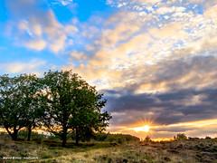 zonsondergang Brunstingerveld