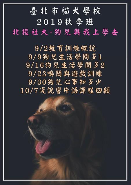 臺北市貓犬學校秋季班
