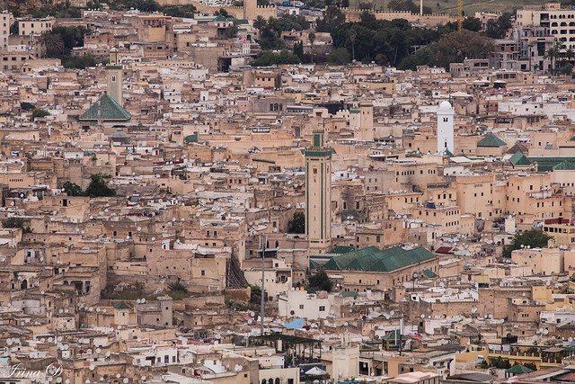 Fez from afar