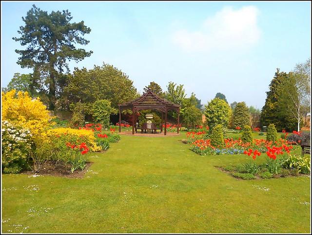 Lovely Garden Scene ..
