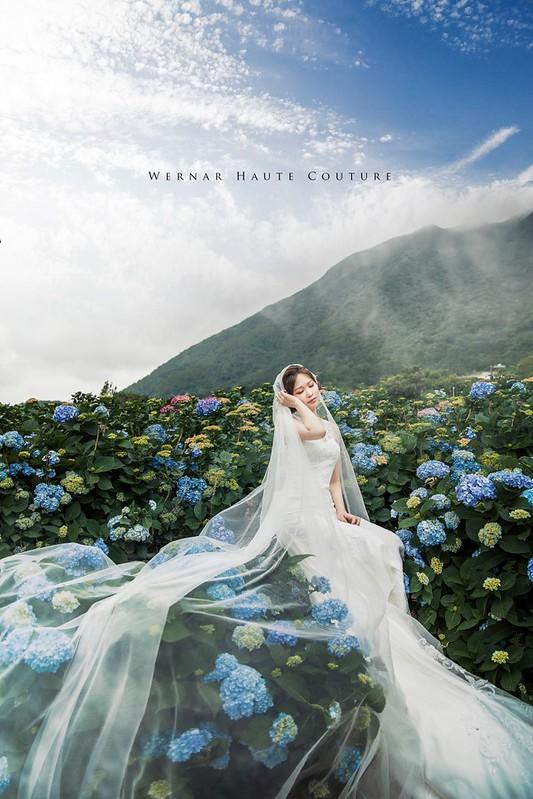 婚紗外拍景點,婚紗推薦,婚紗攝影,自主婚紗,婚紗照,桃園婚紗,台北外拍景點,台北拍婚紗,陽明山拍婚紗,花海婚紗,繡球花花海