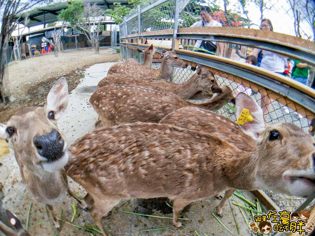 恆春景點-鹿境Paradise Of Deer-25