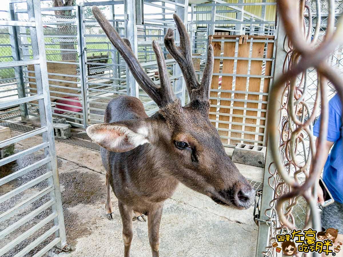 恆春景點-鹿境Paradise Of Deer-26