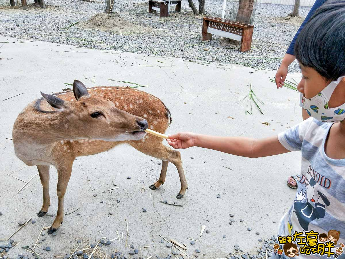 恆春景點-鹿境Paradise Of Deer-22