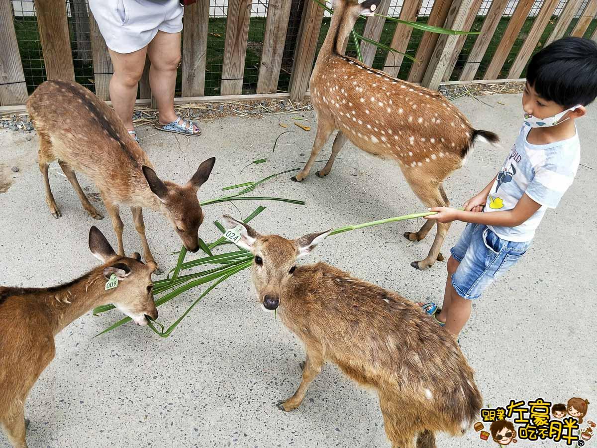 恆春景點-鹿境Paradise Of Deer-20
