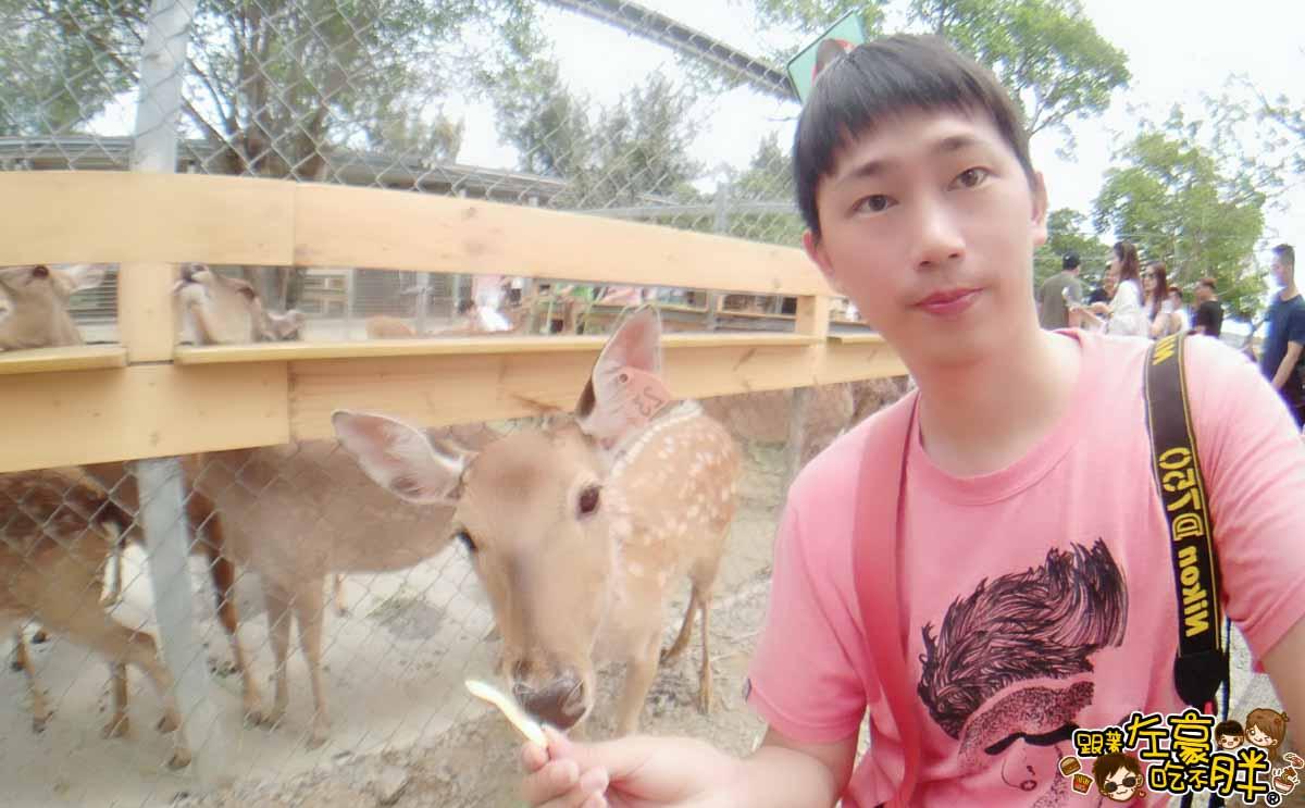 恆春景點-鹿境Paradise Of Deer-18
