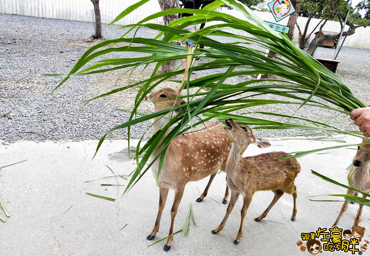 恆春景點-鹿境Paradise Of Deer-27