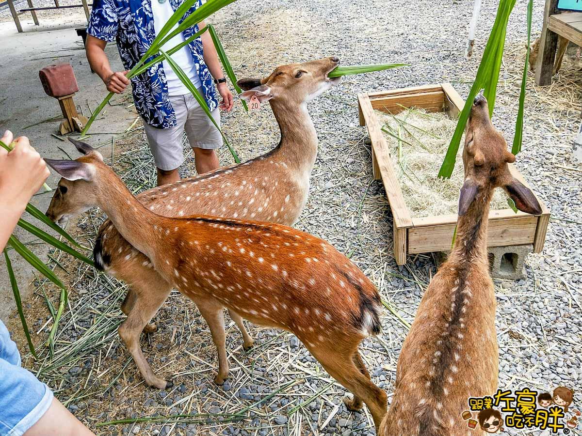 恆春景點-鹿境Paradise Of Deer-14