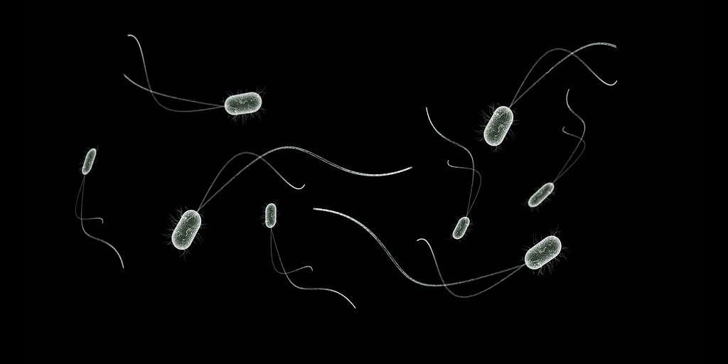 super-bactéries-nouveau-composé