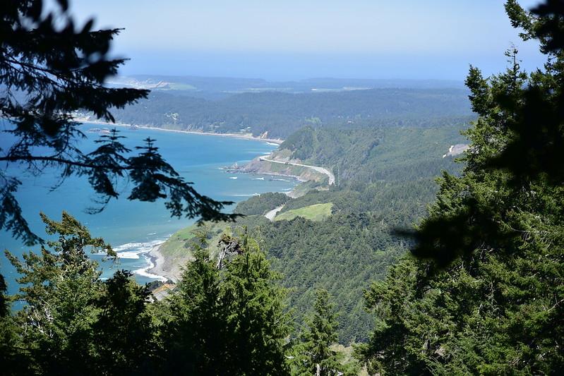 Humbug Mountain Hike