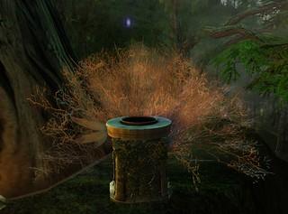 Harshland Magic Tree and Sacred Mirror