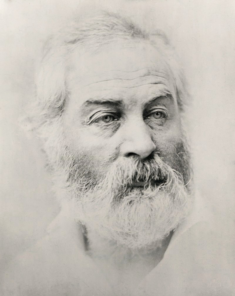 Walt Whitman by Alexander Gardner