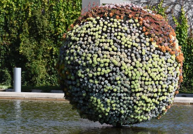 L'automne au Parc Jean-Drapeau