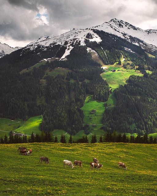 Alpbach, Austria