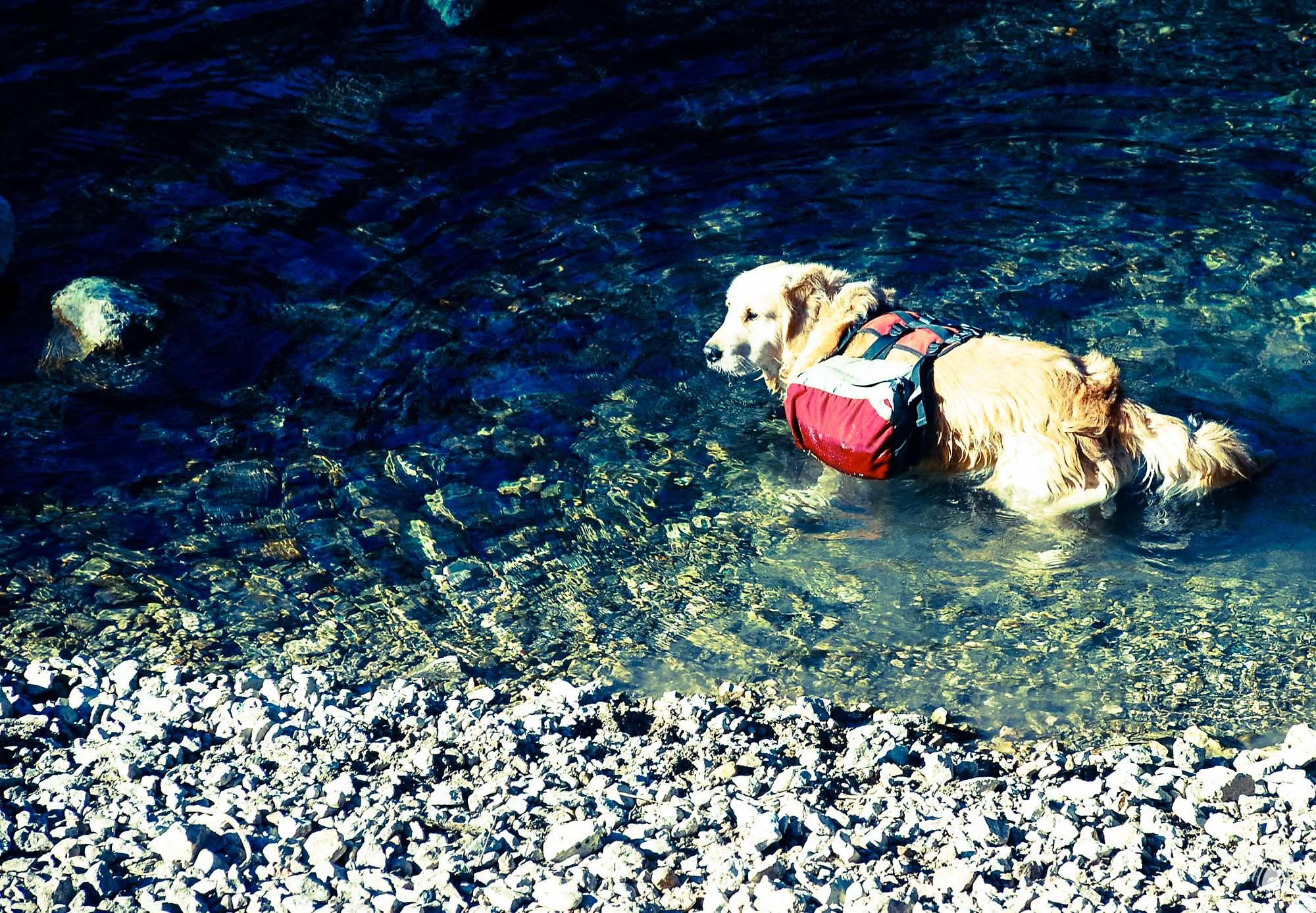 Baño en el Castril