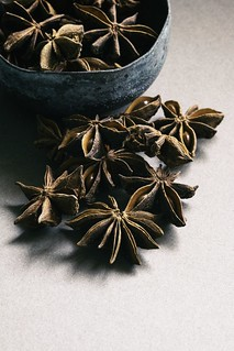 Star Anise | by allanhowe