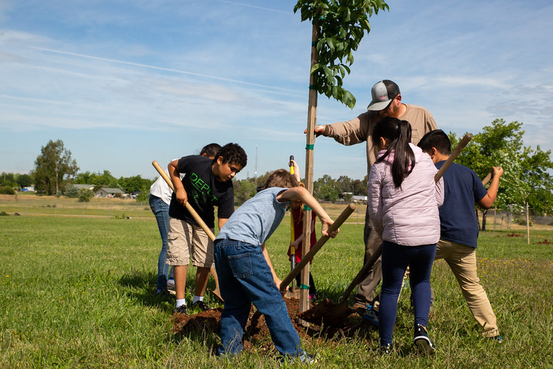 New trees for Sheridan Elementary Schoo