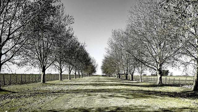 Paisaje otoñal - Fall landscape