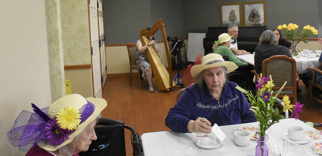 Harp performance - Mother's Day Tea