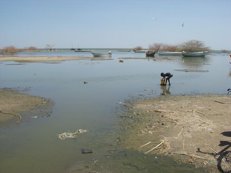 查德湖(Lake Chad)。圖片來源:Sani Ahmad Usman(CC BY-SA 4.0)