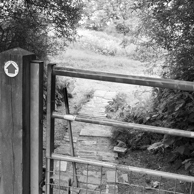 Gate to the next field
