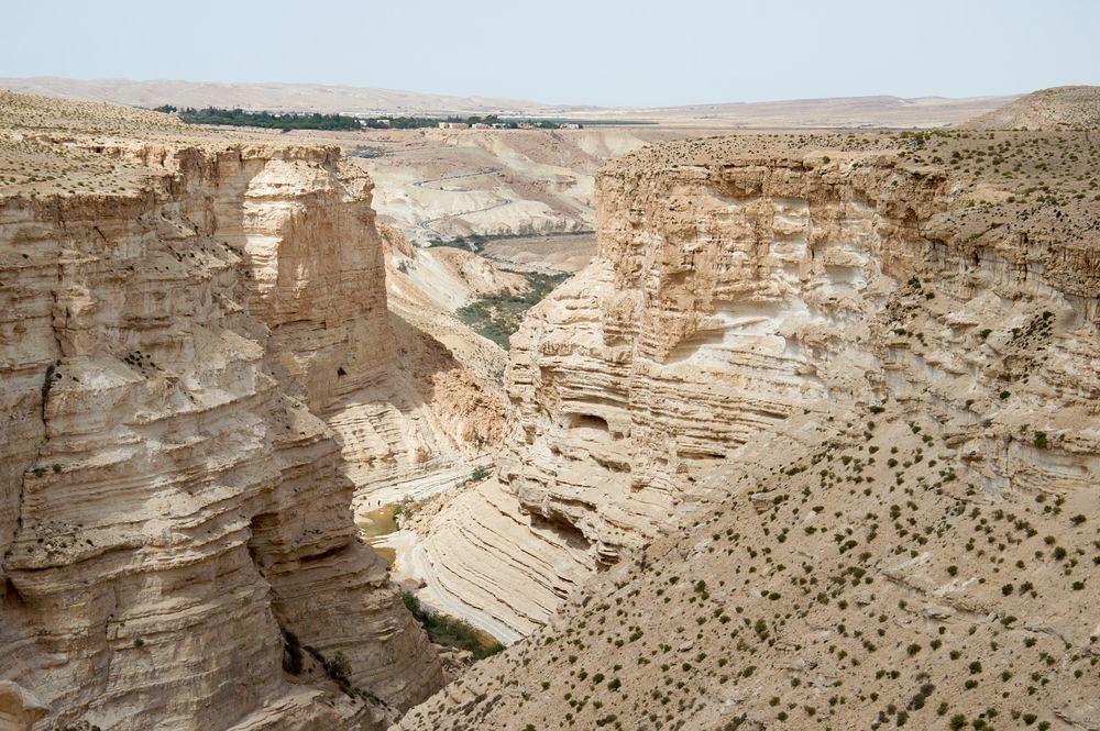 內蓋夫沙漠。(圖片來源:作者提供)