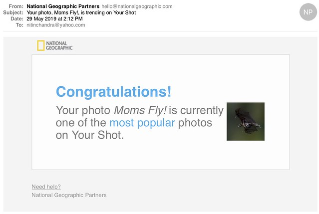 Your photo Moms Fly is trending on Your Shot