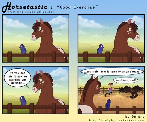 horsetastic