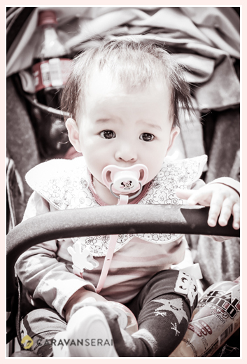 11 month girl on a stroller