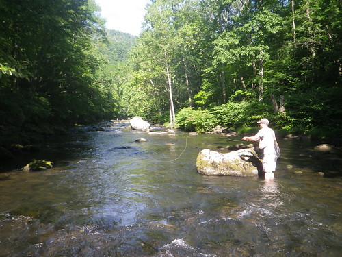 Photo of man Fly fishing on the Savage River in Garrett County.