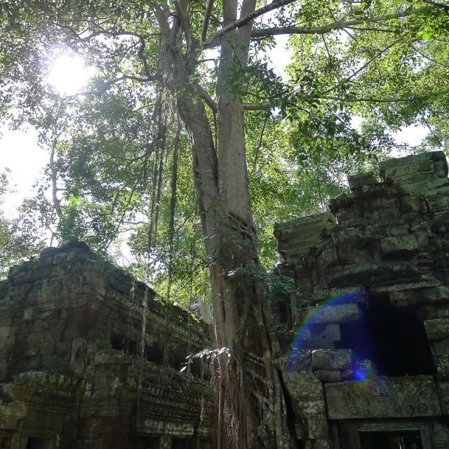 035-Cambodia-Angkor