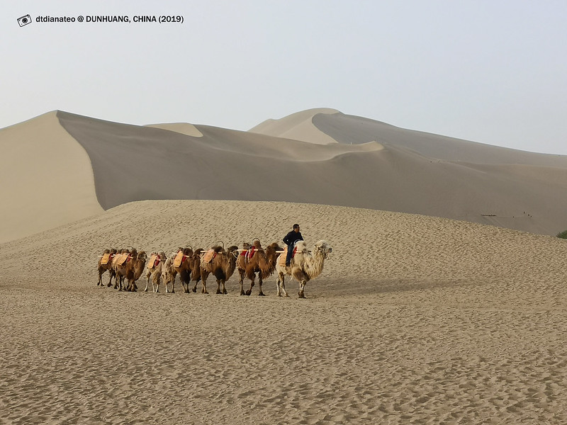 2019 China Dunhuang Mount Mingshashan and Crescent Moon-shaped Spring Geo